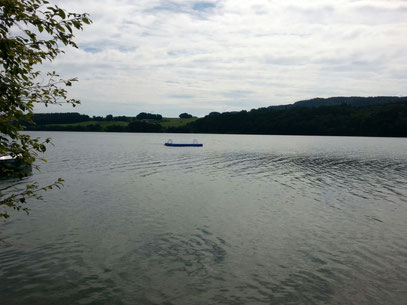 2016 - Personenrettung Mattsee
